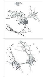 Graph visualization of two daily cumulative networks.